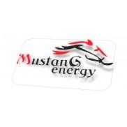 Mustang Energy